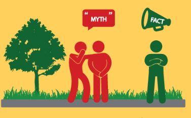 tree myths