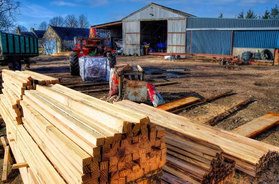 professional timber sawmill-service