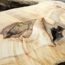 sawn sycamore boards timber supplies for woodcraft